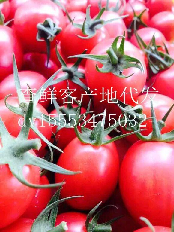 www.s72金沙娱乐.com