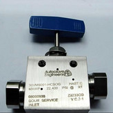 Autoclave 高压硫化氢H2S 针阀