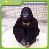 KANO 0573 Gorilla Costume