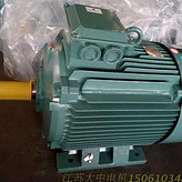 YE3-180-M -4极-18.5KW/超高效节能电机 大中电机/江苏大中/江苏大中电机/节能电机/高效电机/电动机