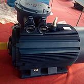 YBX3-160M2 -2极-15KW/防爆节能电机ExdII BT4/江苏大中/江苏大中电机/大中电机